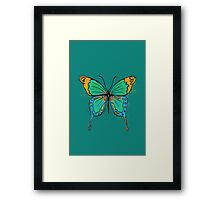 Colorful Butterfly Illustration Framed Print