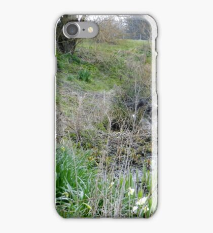 Daffodils out already iPhone Case/Skin