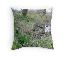 Daffodils out already Throw Pillow