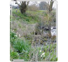 Daffodils out already iPad Case/Skin