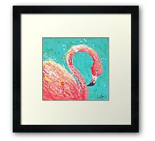Flaunting Flamingo Framed Print