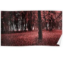 Pink Grove Poster