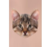 Pixelated Cat Photographic Print