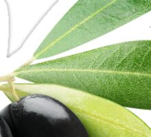 Two black olives on a branch Sticker