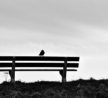 Waiting by RMarks
