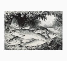 American brook trout - Currier & Ives - 1872 One Piece - Short Sleeve