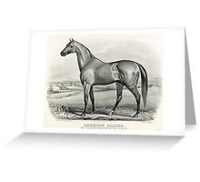 American eclipse - The celebrated racehorse and sire of racers - Currier & Ives - 1880 Greeting Card
