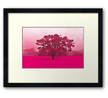 Hot Tree In A Field Of Pink Framed Print