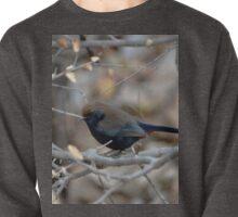 liitle  bird Pullover