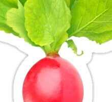 Red radish with big leaves Sticker