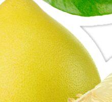 Pummelo fruit Sticker