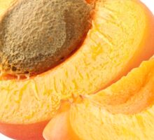Slices of apricot Sticker
