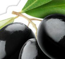 Three black olives on a branch Sticker