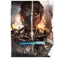Metal Gear Rising Poster