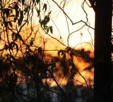 Sunset Behind The Scenes Sticker