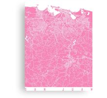 San Juan map pink Canvas Print