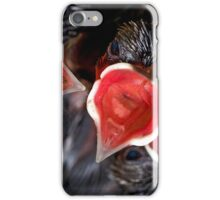 Hatched & Hungry iPhone Case/Skin