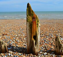 Winchelsea Beach by Corinne Simpson