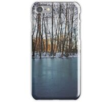 Frozen Lake in northern Germany iPhone Case/Skin