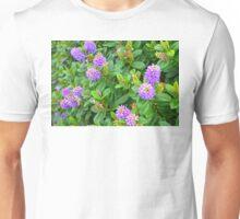 Pretty Purple Flowers Unisex T-Shirt