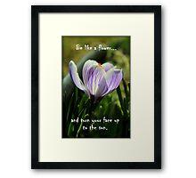 Be Like a Flower.. Framed Print