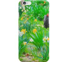 Arkansas Spring iPhone Case/Skin