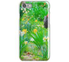 Arkansas Spring iPhone Case/Skin
