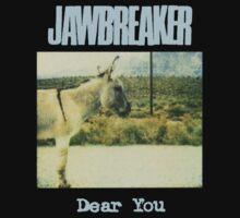Jawbreaker - Dear You by bjorkbjorkbjork