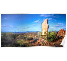 Outback sculpture Poster