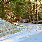 Snow-Covered Road by Cynthia48