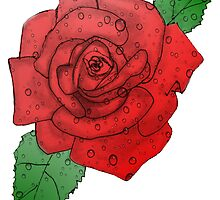 Roses by MARILOLA126