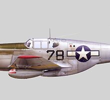 Vintage P-51 Mustang Tuskegee Airmen World War II by pdgraphics