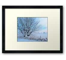 Covered in ice Framed Print