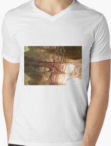 Apothecary Mens V-Neck T-Shirt