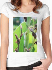 Green Anole Lizard Women's Fitted Scoop T-Shirt