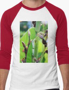 Green Anole Lizard Men's Baseball ¾ T-Shirt