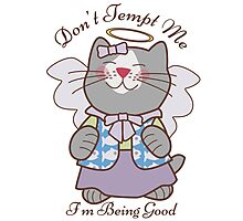 Don't Tempt Me I'm Being Good Angel Cat Photographic Print