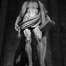 Skinned Saint, Milan Italy, Black and White by Gregory Dyer
