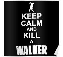 Keep calm and kill a walker Poster