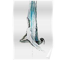 Web - Aerial Dancer Poster