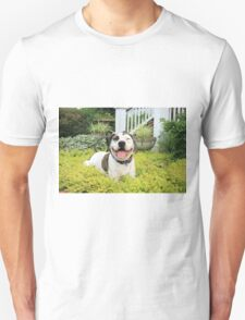 Pit Bull T-Bone T-Shirt