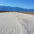 Death Valley Salt Flats by Gregory Dyer