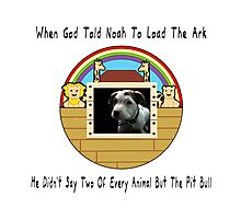 But The Pit Bull Photographic Print