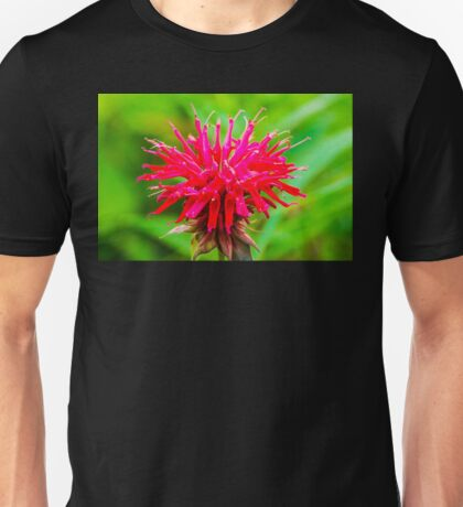Bee Balm - Red Unisex T-Shirt