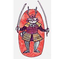 Rail the Samurai Cat Photographic Print