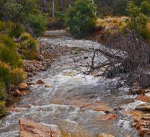 Creek, Rossarden, Tasmania, Australia Sticker