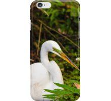 Great Blue Heron - White iPhone Case/Skin