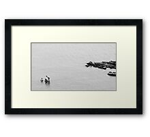 Search for meaning  Framed Print