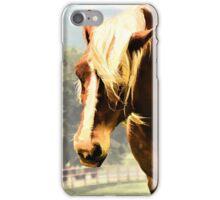 Draft Horse iPhone Case/Skin