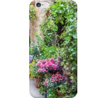 Flower-Lined Street iPhone Case/Skin